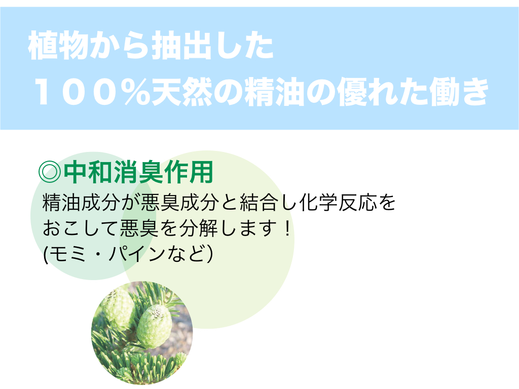 SCORE UP AROMA サイト用.001